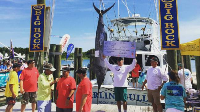 The Marlin Gull's catch weighed in at 564.8 pounds. (Source: The Big Rock Blue Marlin Tournament Facebook page)