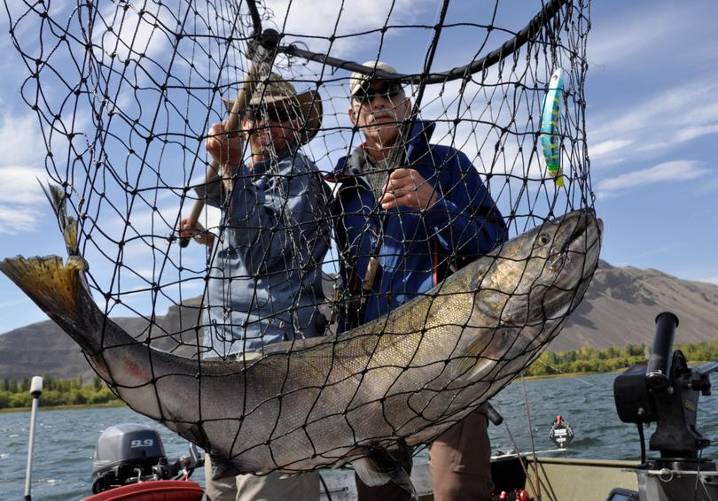 Salmon fishing guide Dave Grove nets a fall chinook for David Moershel of Spokane while fishing on the Columbia River. (Rich Landers)
